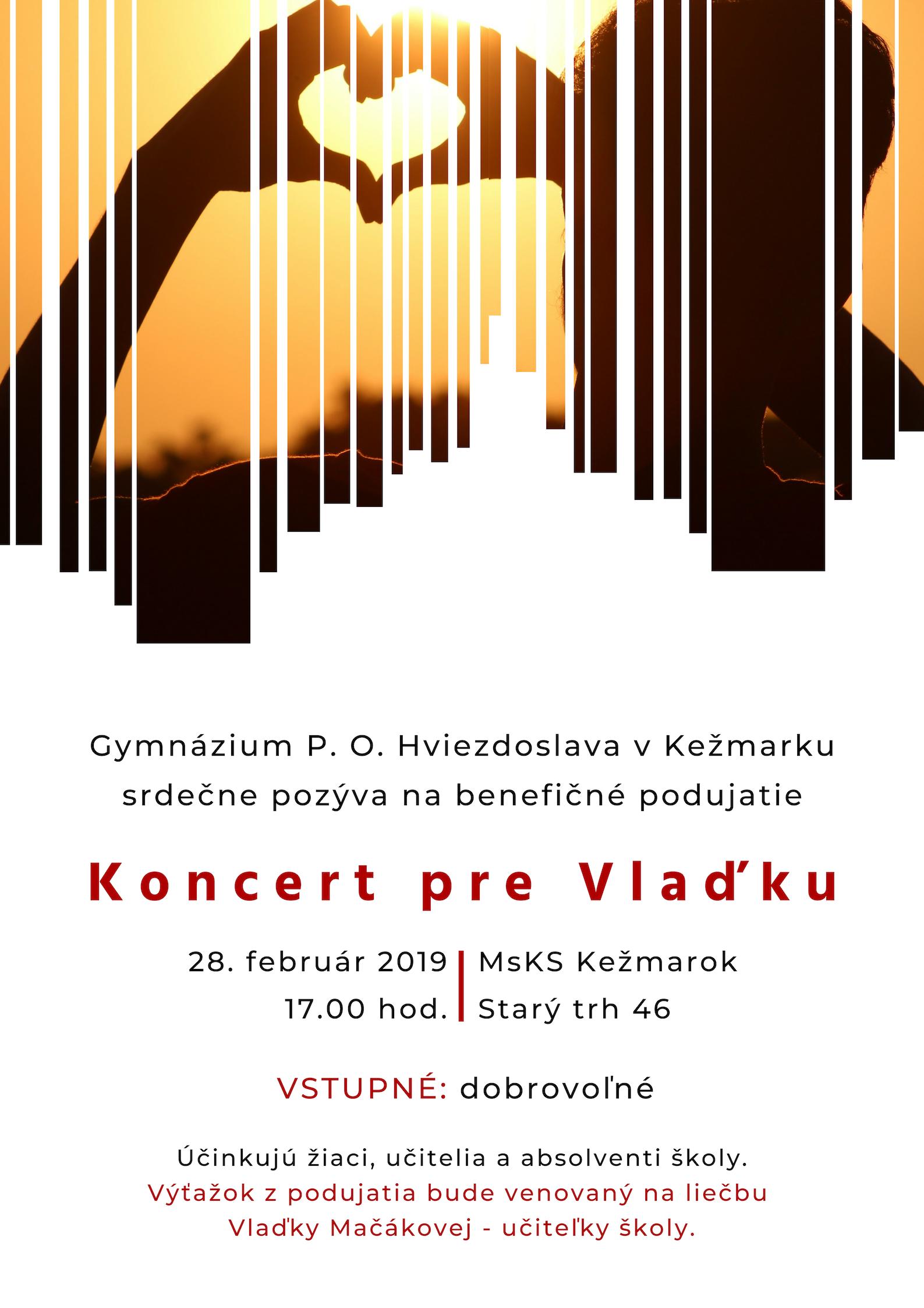 Koncert pre Vlaďku
